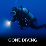 Gone Diving With My Anchor Dive Light